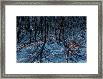 Moonshadows Framed Print