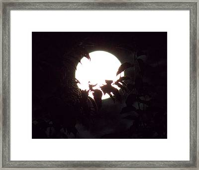 Moonshine 14 Flying Sea Horse Framed Print