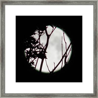 Moonshine 2 Framed Print