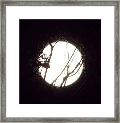 Moonshine 3 Framed Print