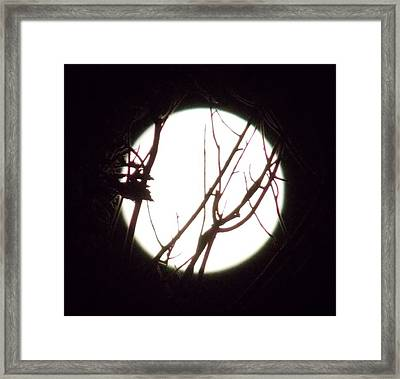 Moonshine 4 Framed Print