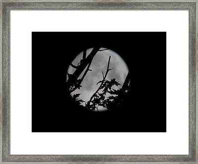 Moonshine 6 Framed Print