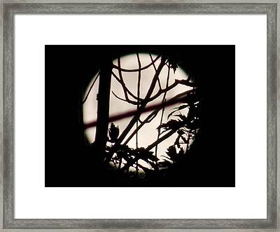 Moonshine 8 Framed Print