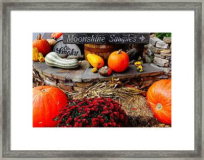 Moonshine Framed Print by Dan Sproul