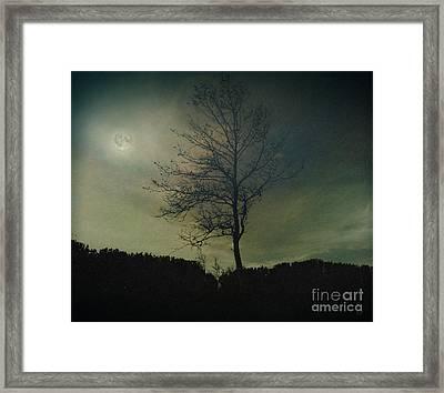 Moonspell Framed Print by Bedros Awak