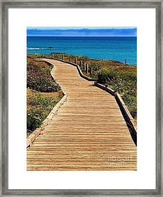 Moonstone Beach Park By Diana Sainz Framed Print