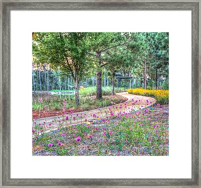 Framed Print featuring the photograph Moore Garden Stroll by Patricia Schaefer