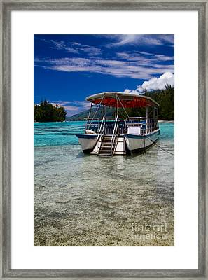Moorea Lagoon No 13 Framed Print by David Smith