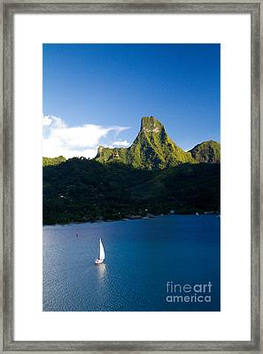Moorea Lagoon No 20 Framed Print by David Smith