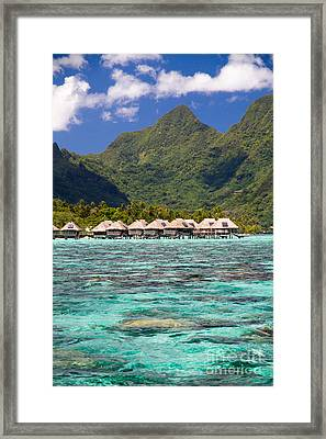 Moorea Lagoon No 3 Framed Print by David Smith