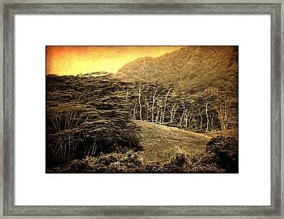 Moorea Landscape Framed Print