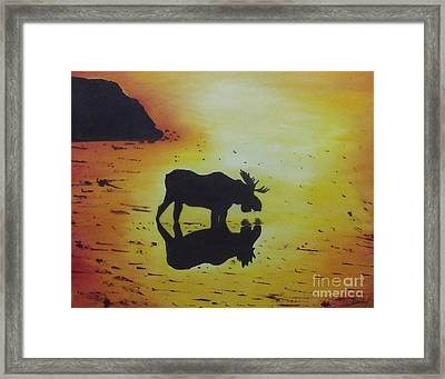 Moose In The Sunset Framed Print by Debra Piro