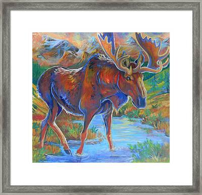 Moose Framed Print by Jenn Cunningham