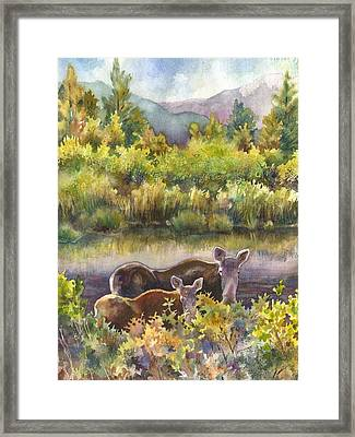 Moose Magic Framed Print