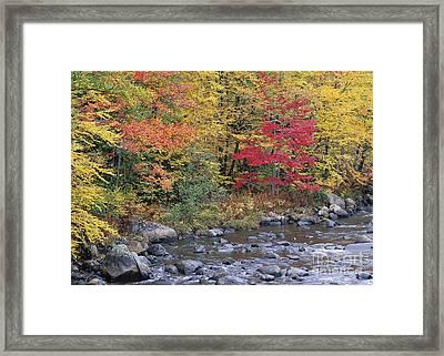Moose River Autumn Framed Print by Alan L Graham