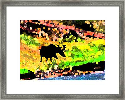 Moose Strolling Along The River Bank Framed Print by Dane Ann Smith Johnsen