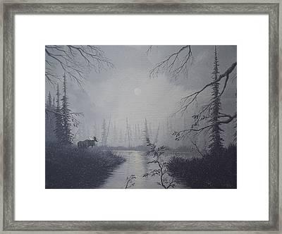 Moose Swanson River Alaska Framed Print