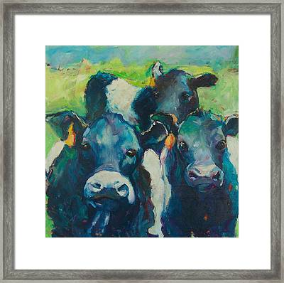 Moove Over Framed Print by Sue Scoggins