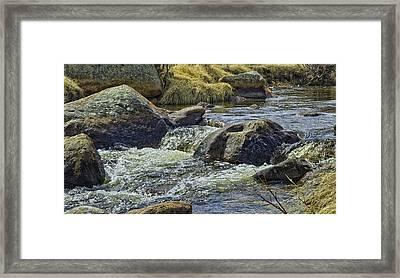 Moraine Park Framed Print by Tom Wilbert