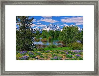 Moran From Pilgrim Creek Framed Print
