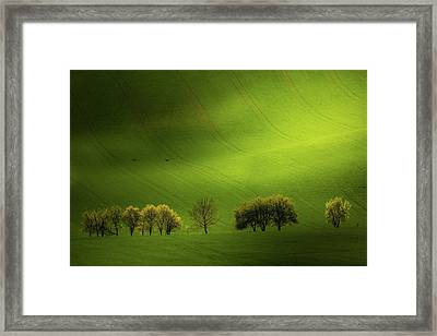 Moravian Beauty Framed Print