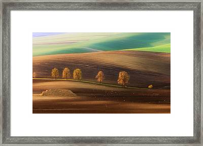 Moravian Trees Framed Print