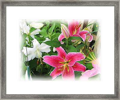 More Lilies Framed Print by Victoria Sheldon