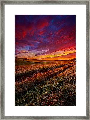 More Than A Feeling Framed Print by Phil Koch