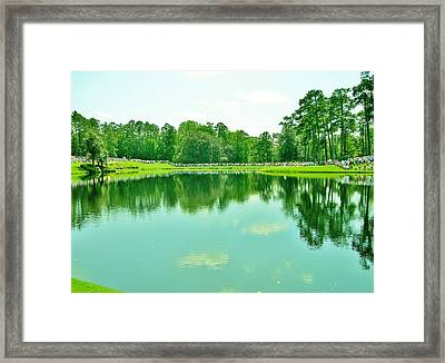 More To Reflect Framed Print