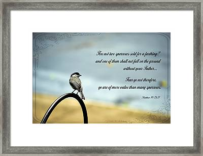 More Value Than Sparrows Framed Print by Larry Bishop