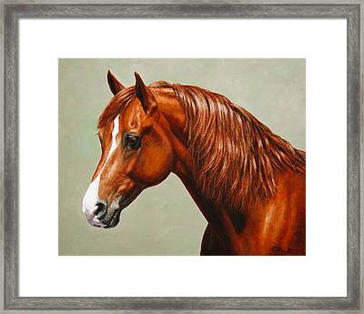 Morgan Horse - Flame - Mirrored Framed Print by Crista Forest