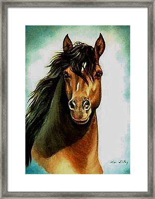 Framed Print featuring the painting Morgan Horse by Loxi Sibley