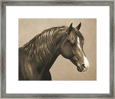 Morgan Horse Painting In Sepia Framed Print by Crista Forest