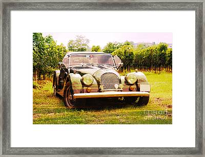 Morgan Plus 4 In Front Of Vineyard Framed Print by Perry Van Munster