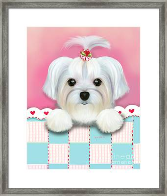 Morkie Shelly Framed Print
