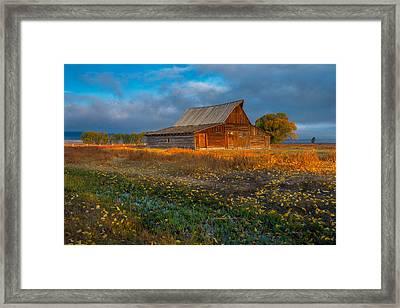 Mormon Row Autumn Framed Print