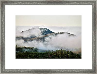Framed Print featuring the photograph Morning After The Storm by Allen Carroll