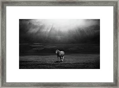 Morning Appearance Framed Print