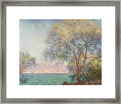 Morning At Antibes Framed Print