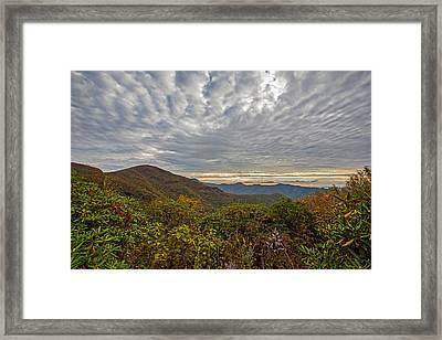 Morning At Craggy Gardens Framed Print
