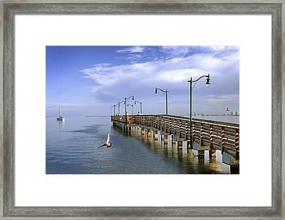 Morning At Jensen Pier Framed Print by Patrick M Lynch