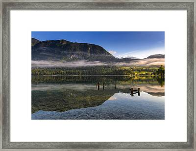 Morning At Lake Bohinj Framed Print by Robert Krajnc