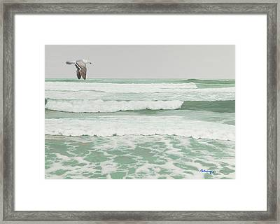 Morning At Pomponio Shore Patrol Framed Print