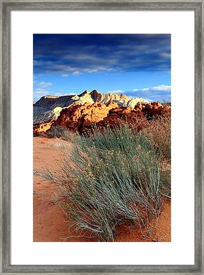 Morning At Snow Canyon State Park Framed Print by Eric Foltz