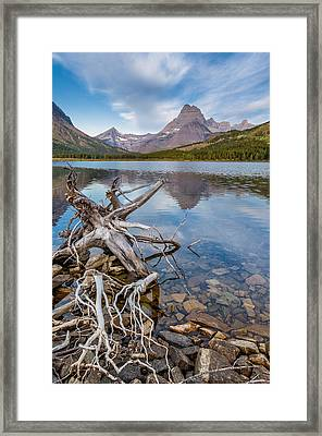 Morning At Swiftcurrent Shoreline Framed Print by Greg Nyquist