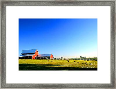 Morning At The Farm Framed Print by Steven Reed