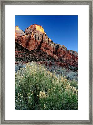Morning At Zion National Park Framed Print by Eric Foltz