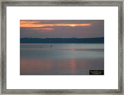 Morning Beauty 1 Framed Print