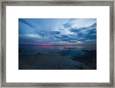 Morning Blues Framed Print by Dennis Hofelich