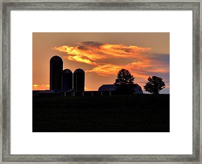 Morning Blush Framed Print